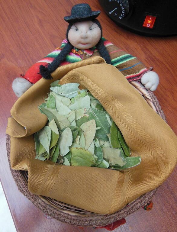 feuilles de coca